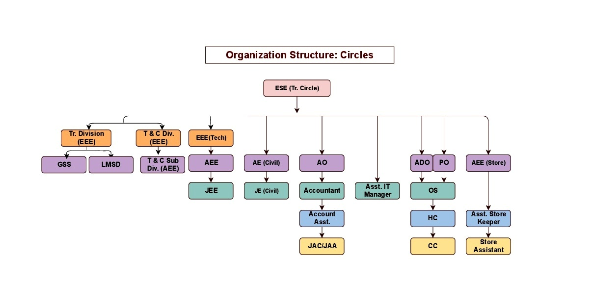 Organization Structure: Circles